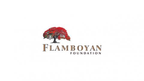 Flamboyan Foundation